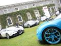 Bugattis galore
