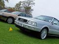 Audis on show
