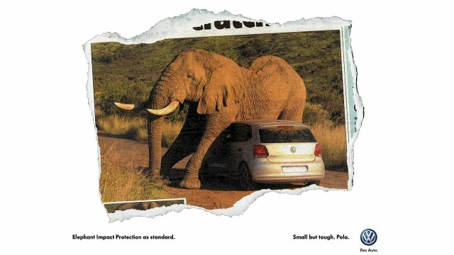 VW-Polo-Elephant