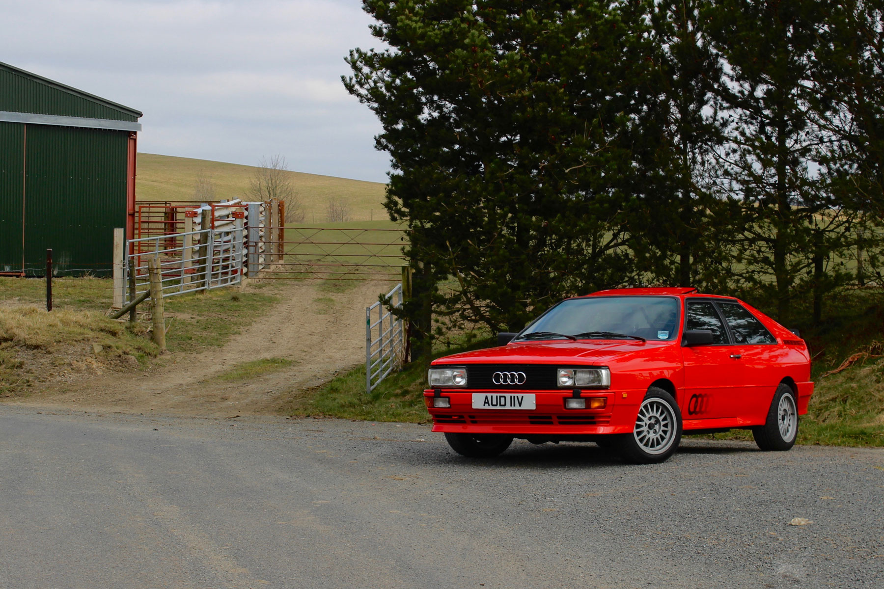4_Audi_Quattro_RRT