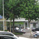 Dieselgate: Sales of 80 Volkswagen models suspended in South Korea