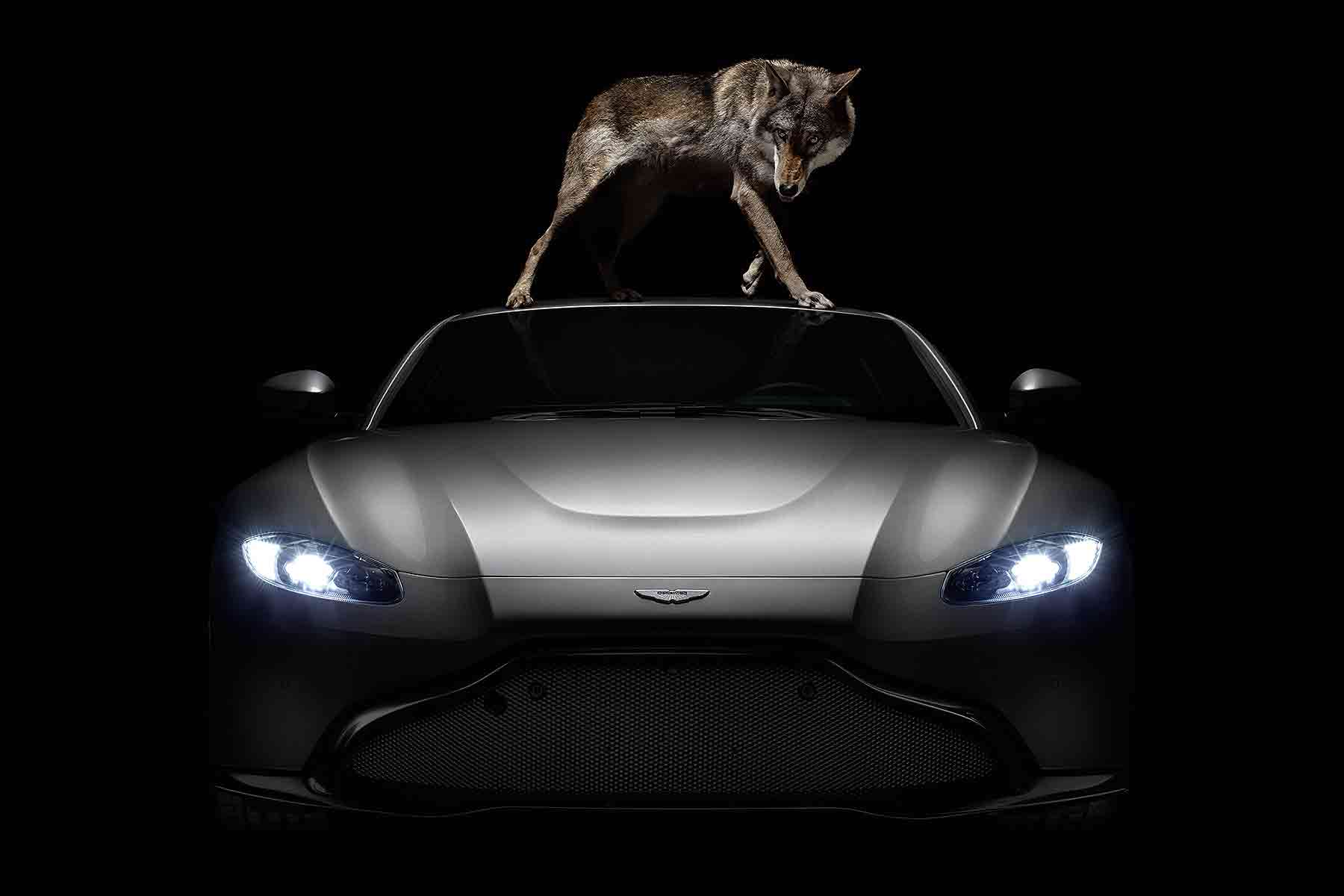 New Aston Martin Vantage by Rankin