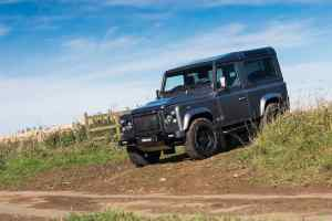 Twisted Automotive Expansion