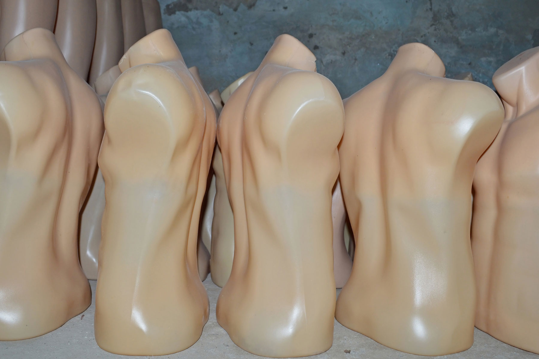 torsos found in untaxed vehicle