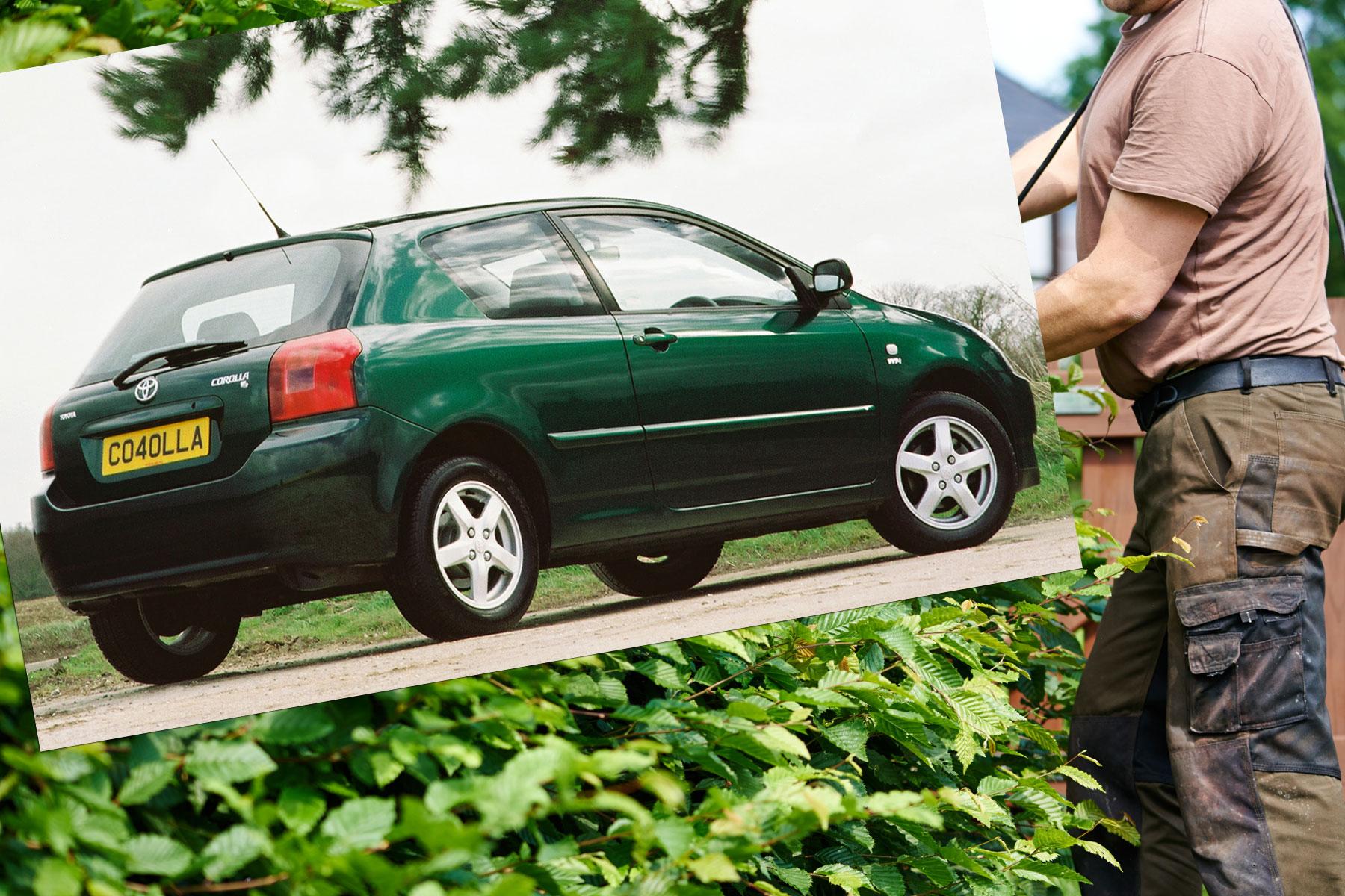 Toyota Corolla garden