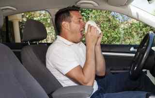 VW hay fever