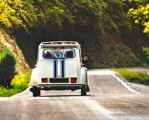 Drive It Day
