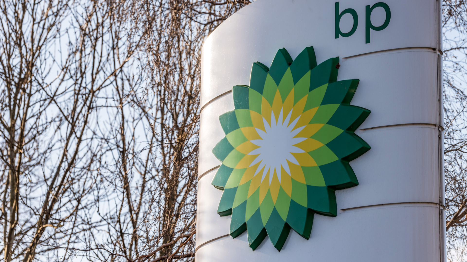 BP ends partnership with Nectar