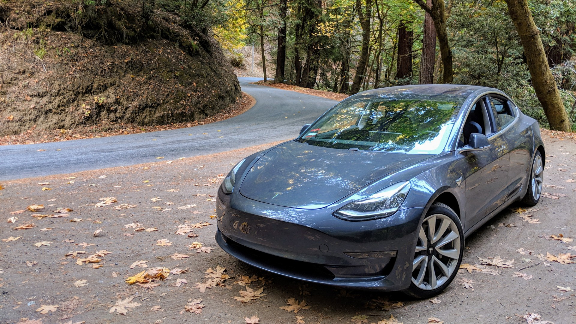 Tesla now does car insurance