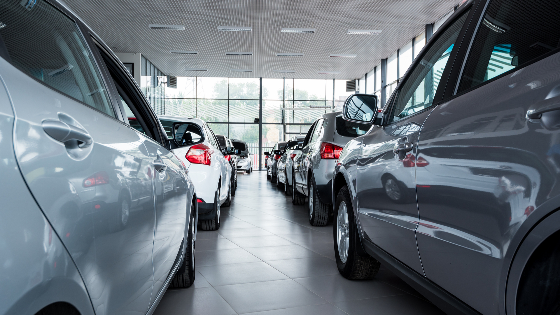 Cars for sale in showroom