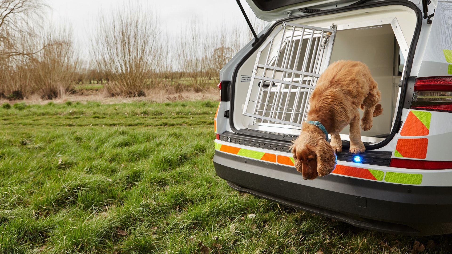 Skoda Kodiaq joins police dog fleet