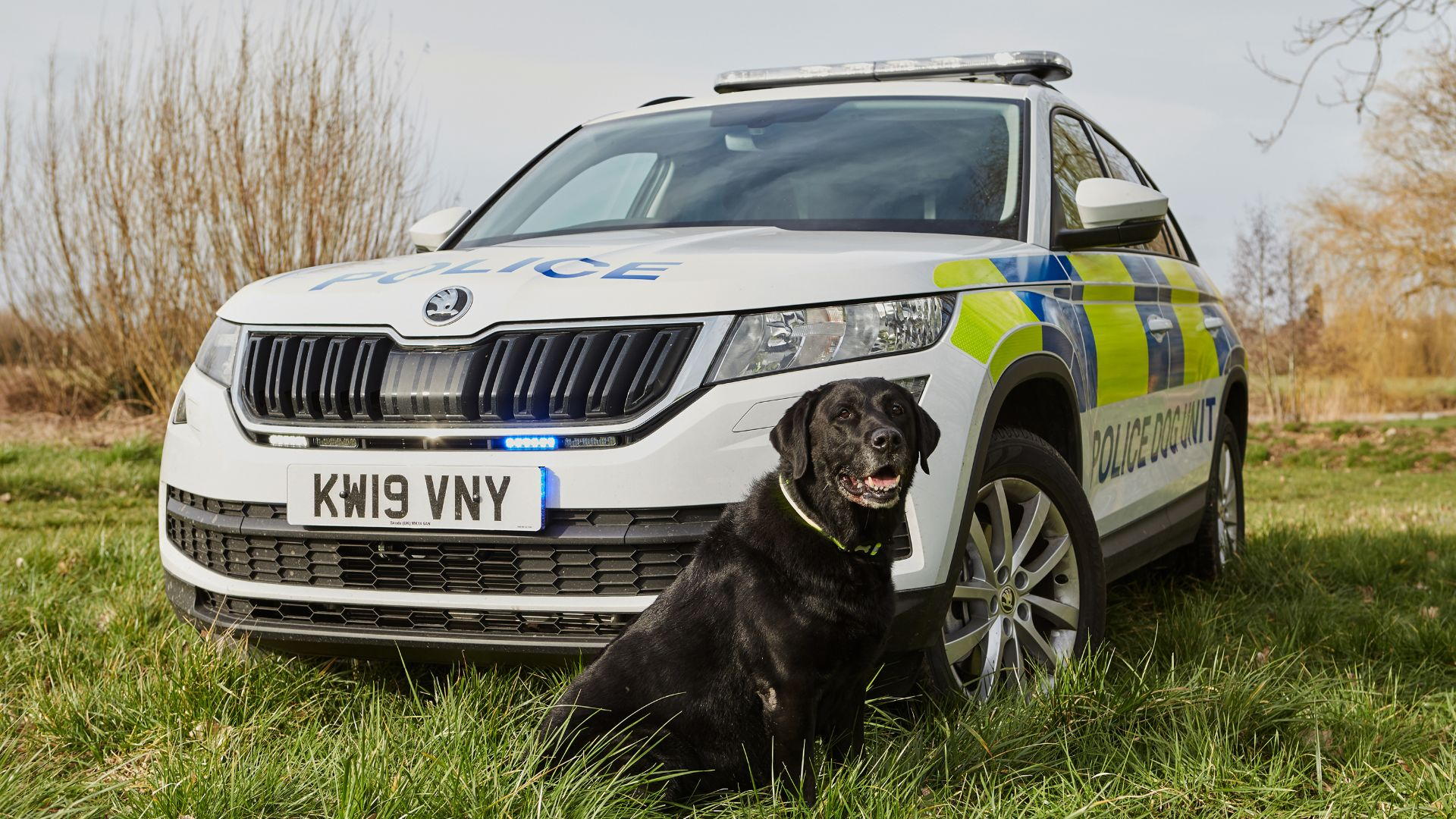 Skoda Kodiaq joins police dog fleet