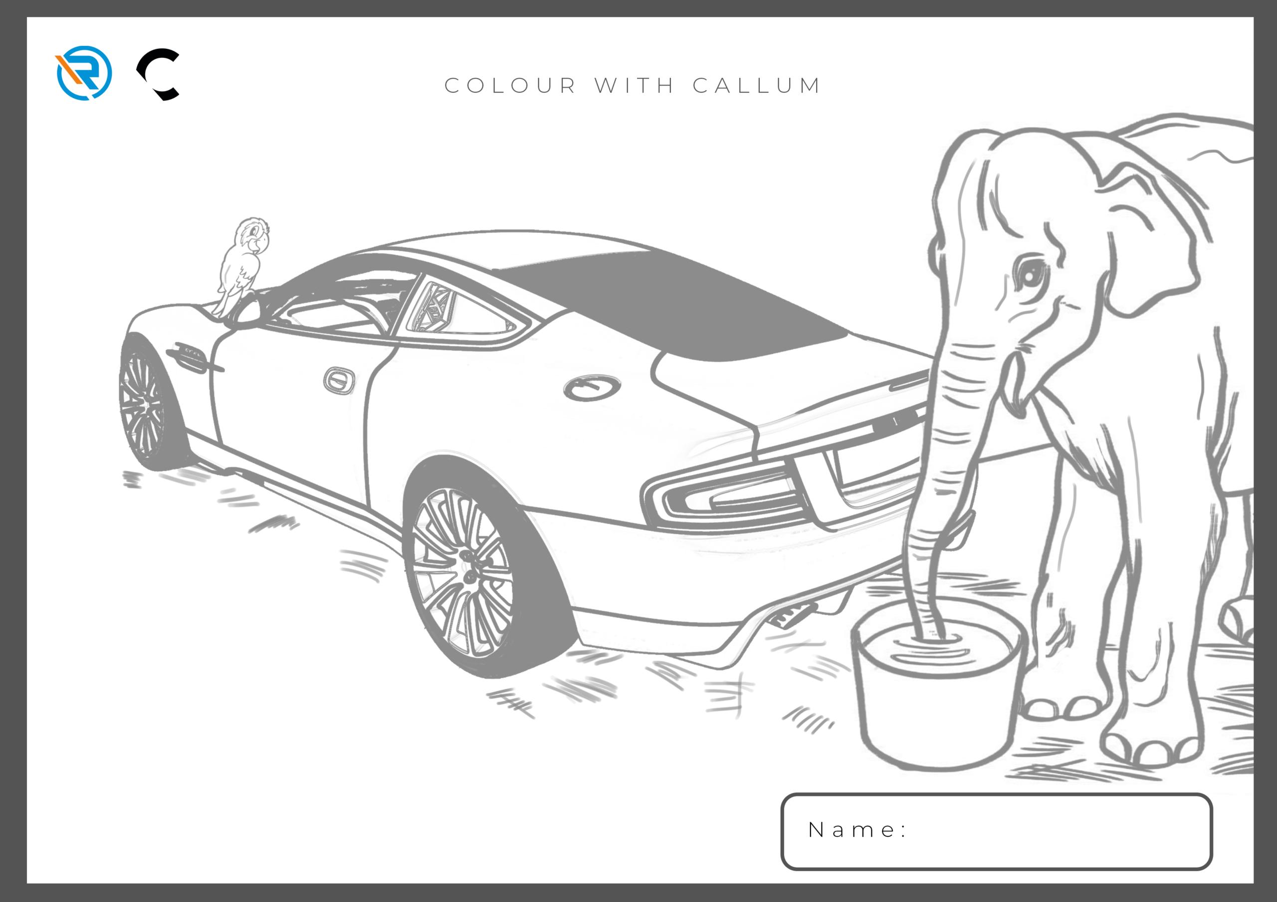 Colour with Callum 1
