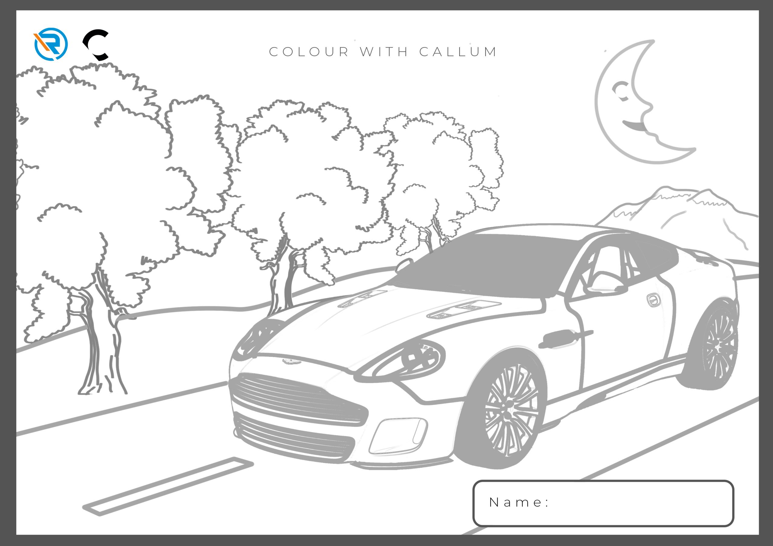 Colour with Callum 2
