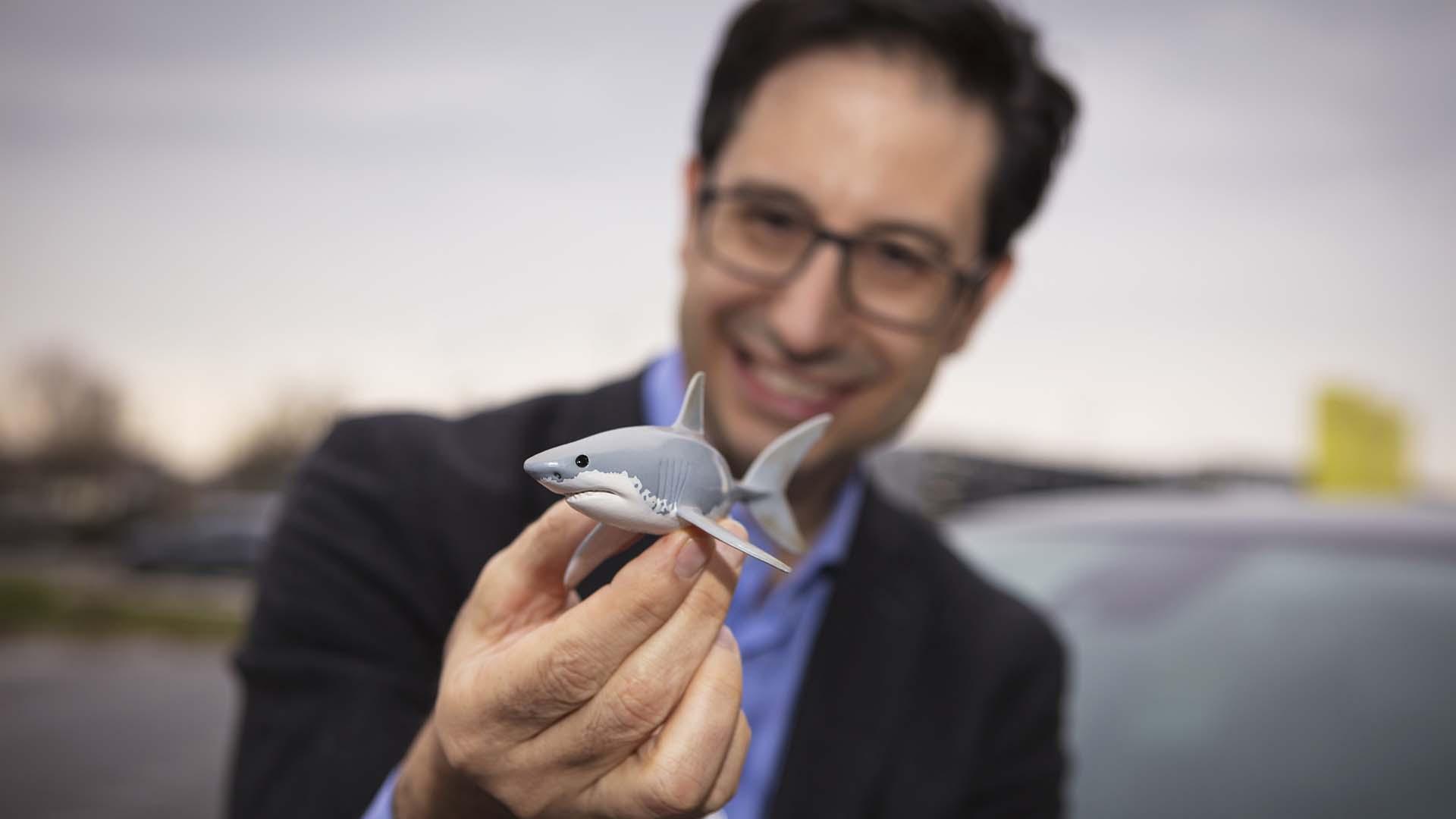 When car designers jump the shark